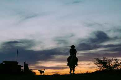 silhouette of person riding horse